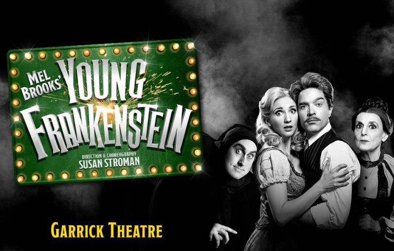 Image result for young frankenstein see tickets