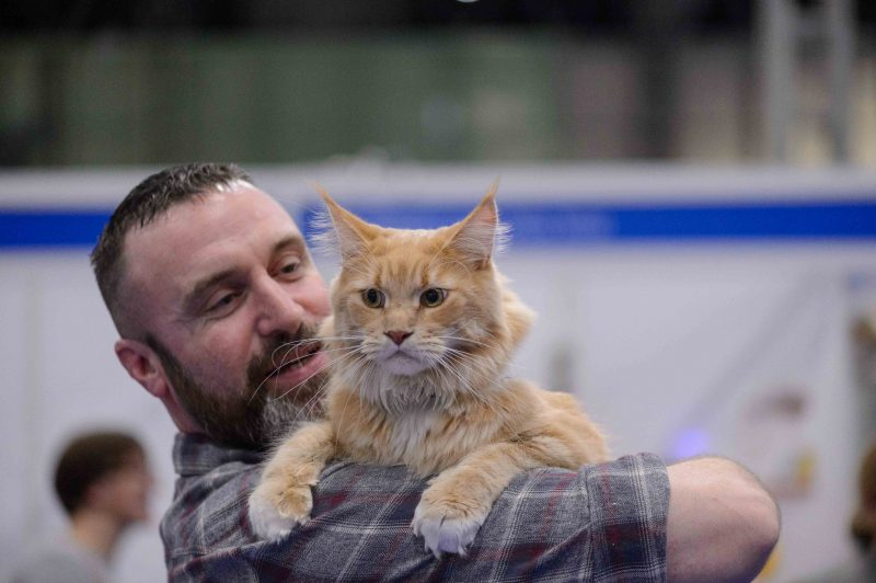 Cat and Owner - National Pet Show